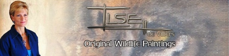 Ilse de Villiers - Original Wildlife Paintings