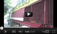 Video feed page - ADI Rescue